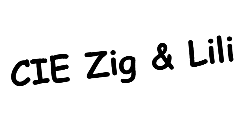 Logo zig lili